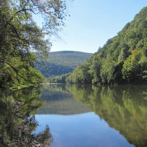 Pine Creek Valley